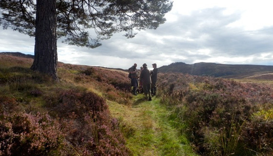 Murthly estate stalking party in the Perthshire hills - A Murthly estate stalking party prepares to hunt in the Perthshire hills