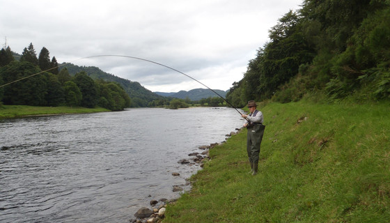 Salmon Fishing on the banks of the River Tay at Murthly Estate - Casting from the bank of the River Tay, Perthshire, hoping to catch a salmon (© Murthly Estate)