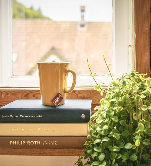 Window + Books + Coffee (© Creative Comms Zero (CC0))