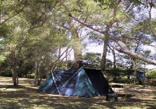 Badger Creek Australia  city photos gallery : Badger Creek Caravan & Holiday Park, Healesville, Metropolitan ...