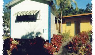 Picture of Lismore Palms Caravan Park, The Far North Coast