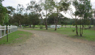 Picture of Glendon Camping Grounds, Southern Downs