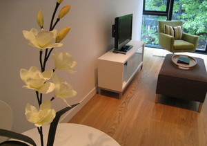 Living Space - The apartment benefits from a WiFi connection and flat screen digital TVs and DVD players can be found in both the lounge and bedroom.