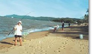 Picture of Flying Fish Point Caravan Park, Cairns & Tropic North