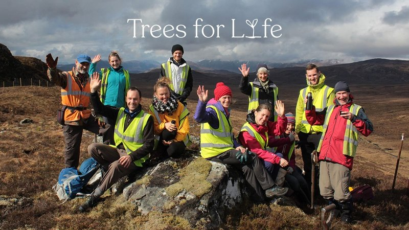 eco friendly holidays - The team at Trees for Life