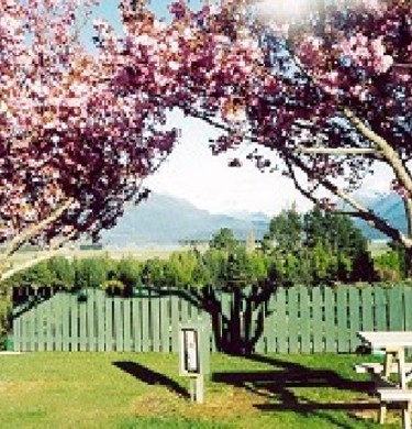 Picture of Fiordland Holiday Park, Southland