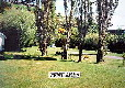 Picture of Portobello Village Tourist Park, Otago