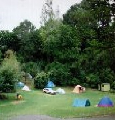 Picture of Dickson Holiday Park, Waikato