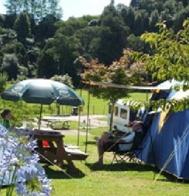Picture of Waitomo Top 10 Holiday Park, Taupo
