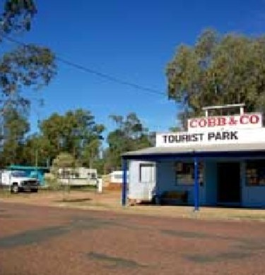 Picture of Cobb & Co Caravan Park, Outback