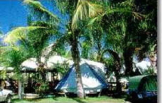 Picture of Sun City Caravan Park , Townsville / NQ