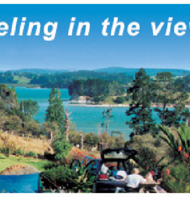 Picture of Matakohe Top 10 Holiday Park, Northland