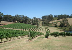 Our vinyard - Upload images for each of your properties for your Bookster Website