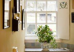 Stylish area near the window