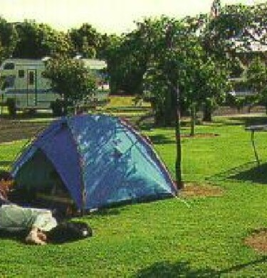 Picture of Manukau Top 10 Holiday  Park, Auckland