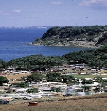 Picture of Martins Bay Holiday Park, Nelson