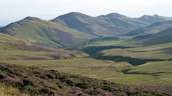Pentland Hills (© 2010 Gyula Péter)
