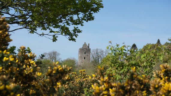 Visit Cardoness Castle