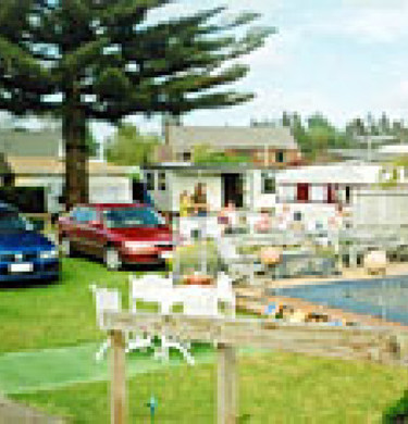 Picture of Mercury Bay Motor Camp & Holiday Park, Waikato