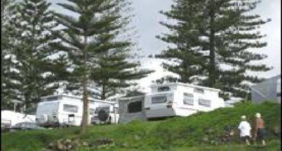 horseshoe bay beach park south west rocks the far north. Black Bedroom Furniture Sets. Home Design Ideas