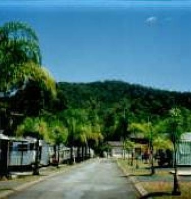 Picture of Advancetown Caravan Park, Gold Coast