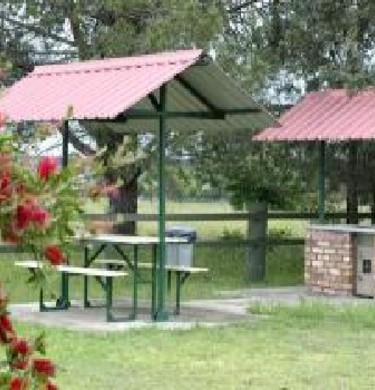 Picture of Country Road Caravan Park, Coffs Coast to Yamba