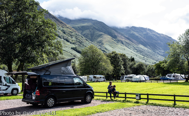 Bonnie on campsite (© stellapicsltd)