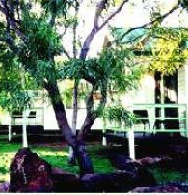 Picture of Gilbert Park Tourist Village, Outback