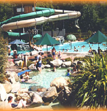 Picture of Pines Holiday Park, Canterbury