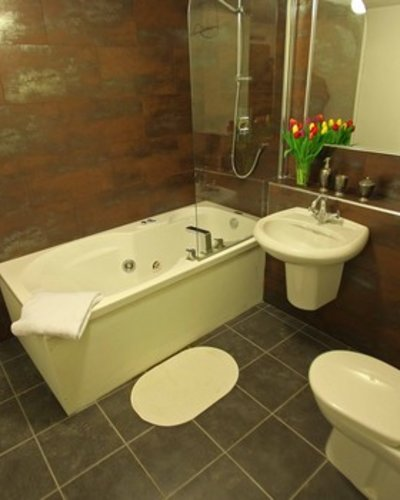 Picture of Niddry St 3, 150 metres from Royal mile, Lothian, Scotland - Bathroom