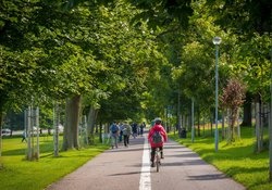 Cyclist Path - The Meadows