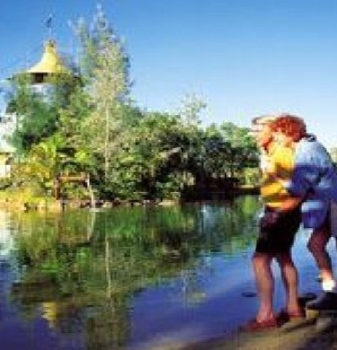 Picture of Barcaldine Tourist Park, Outback