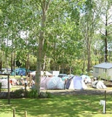 Picture of Bay Of Islands Holiday Park, Northland