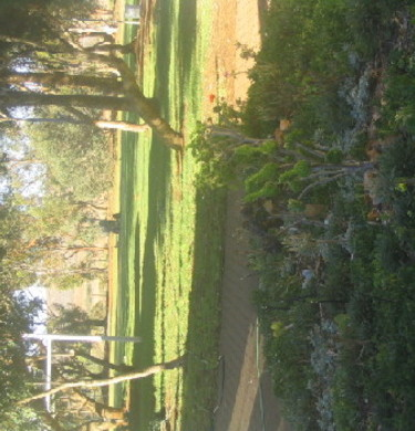 Picture of CARRIETON -Horseshoe view Caravan Park, Flinders Ranges and Outback