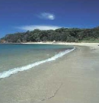 Picture of Bendalong Point Tourist Park, Batemans Bay-Sussex Inlet