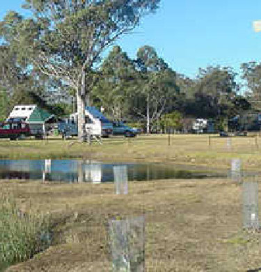 Picture of Crows Nest Caravan Park, Toowoomba / Golden West