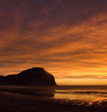 Picture of Mahia Beach Motels & Holiday Park, East Cape
