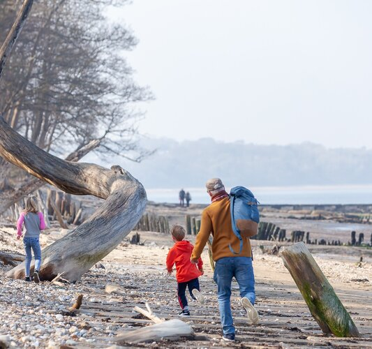 Lots of exploring to do on the beach - Bembridge - Wight Holiday Lettings - Lots of exploring to do on the beach!