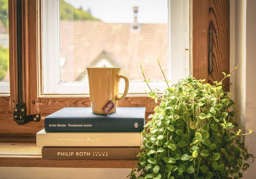 Window + Books + Coffee