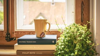 Window + Books + Coffee (© Creative Comms Zero (CC0))