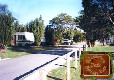 Picture of Riccarton Park Motor Camp, Canterbury