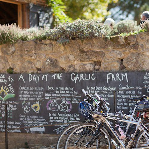 """""""Garlic Farm Cafe 2"""""""
