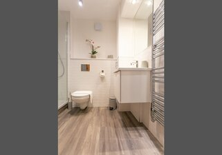Modern Shower room with toilet