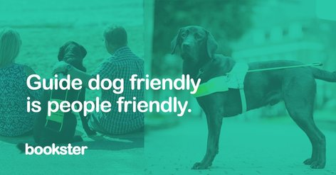Guide dogs in holiday lets - An assistance dog and people with visibility impairments at holiday rentals.
