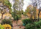 36.Garden