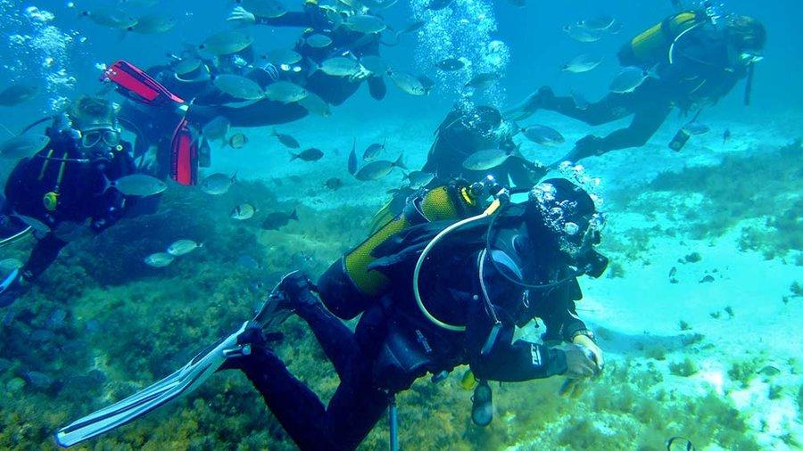 """""""Gozo Buoyant Dive Centres"""""""