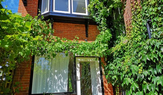 Entrance to Cottage - Seaview - Wight Holiday Lettings