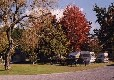 Picture of All Seasons Holiday Park, Bay of Plenty