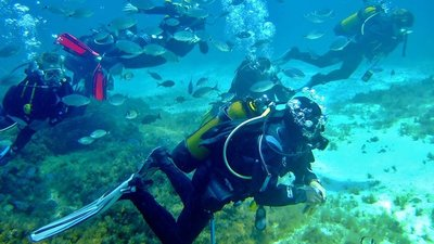 Scuba diving in Gozo - Scuba Diving in Gozo, Malta swimming with the fish with clear waters