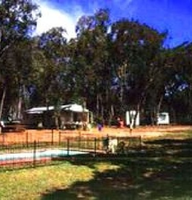 Picture of Warrumbungles Holiday Camp, Central NSW